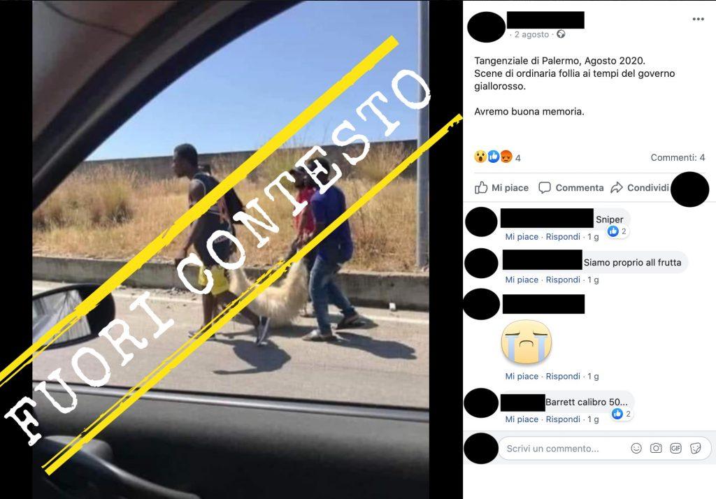 No, questa foto che mostra quattro persone trasportare un animale morto non è stata scattata ad agosto 2020